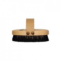 REPAGEN BODY Ionic Brush
