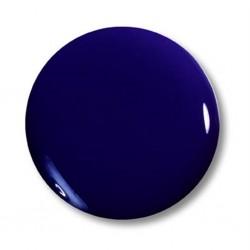 Magic Nails Farb-Acry Pulver - dunkel blau Nr. 6