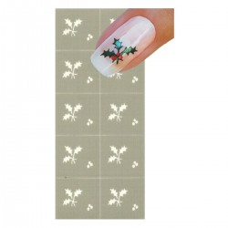 Smart Nails Nagellack Schablone NDS0005